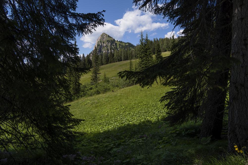 https://www.eifelmomente.de/albums/Urlaub/2018_07_17-26_Alpen/2018_07_18_-_105_Aufstieg_Sarlridl_DNG_bearb.jpg