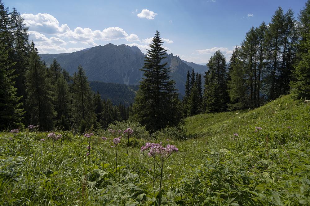 https://www.eifelmomente.de/albums/Urlaub/2018_07_17-26_Alpen/2018_07_18_-_117_Aufstieg_Sarlridl_DNG_bearb.jpg