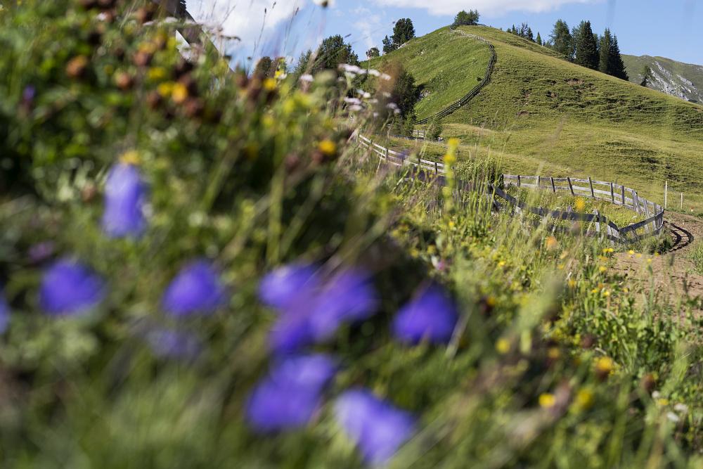 https://www.eifelmomente.de/albums/Urlaub/2018_07_17-26_Alpen/2018_07_18_-_155_Sarlridl_DNG_bearb.jpg