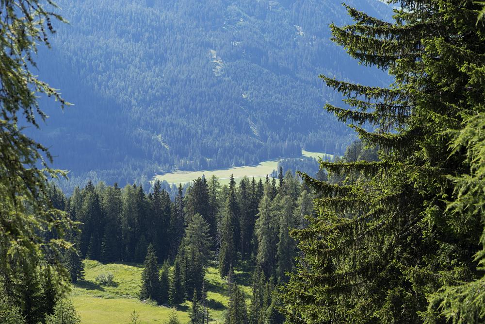 https://www.eifelmomente.de/albums/Urlaub/2018_07_17-26_Alpen/2018_07_18_-_166_Abstieg_Sarlridl_DNG_bearb.jpg